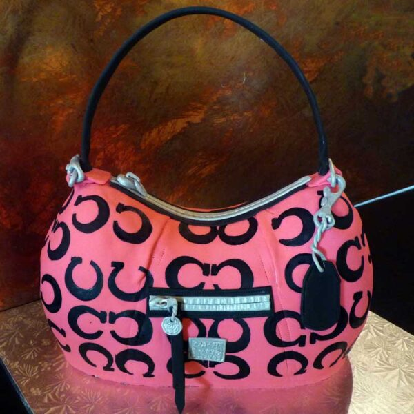 COACH DESIGN PURSE